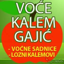 Voćne sadnice Gajić