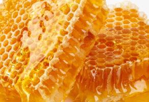 Karolji Nektar Proizvodnja opreme za pčelarstvo Becej