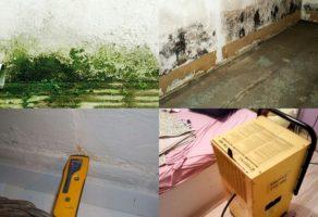 Uklanjanje vlage u vašem domu, lokalu i poslovnom prostoru